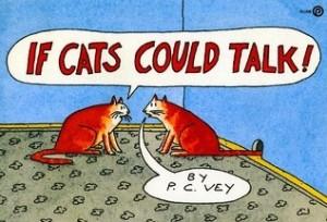 Vey:Cats