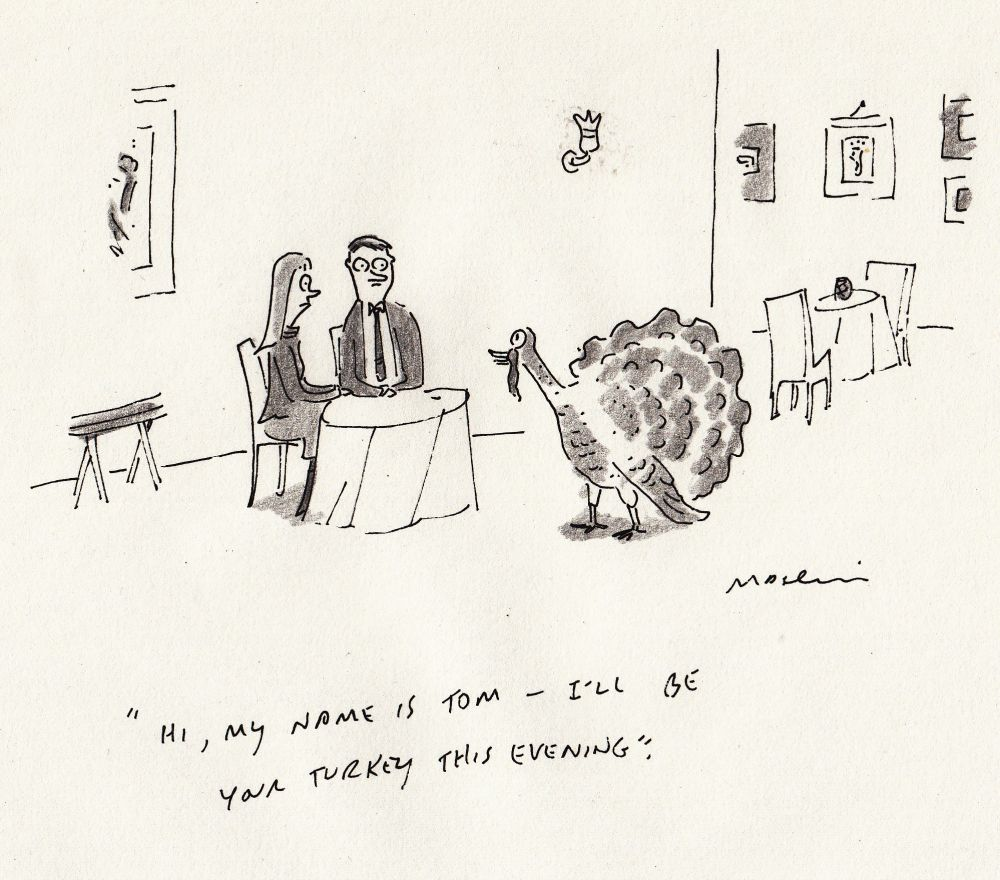om, your turkey this evening